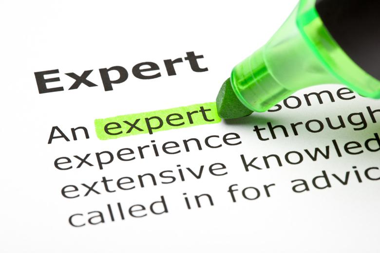 expert-definition